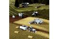 农业和林业机械