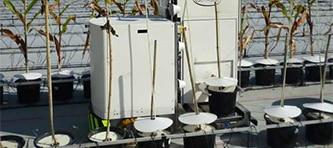 SICKinsight heliaphen robot image